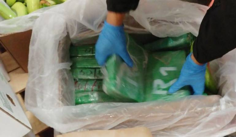 Lucha contra cultivos ilicitos en cauca: Dura ofensiva contra el narcotráfico en Cauca