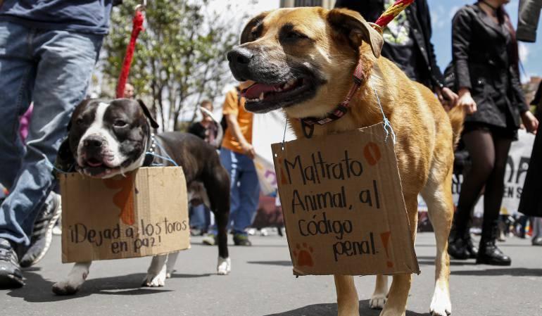 JUDICIAL, HOMICIDIO, PERROS: Pelea por perros deja tres personas muertas en Bucaramanga