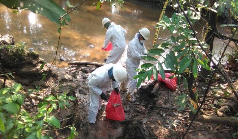 ANLA vigila acciones de Ocensa tras derrame de crudo en Puerto Boyacá: ANLA vigila acciones de Ocensa tras derrame de crudo en Puerto Boyacá