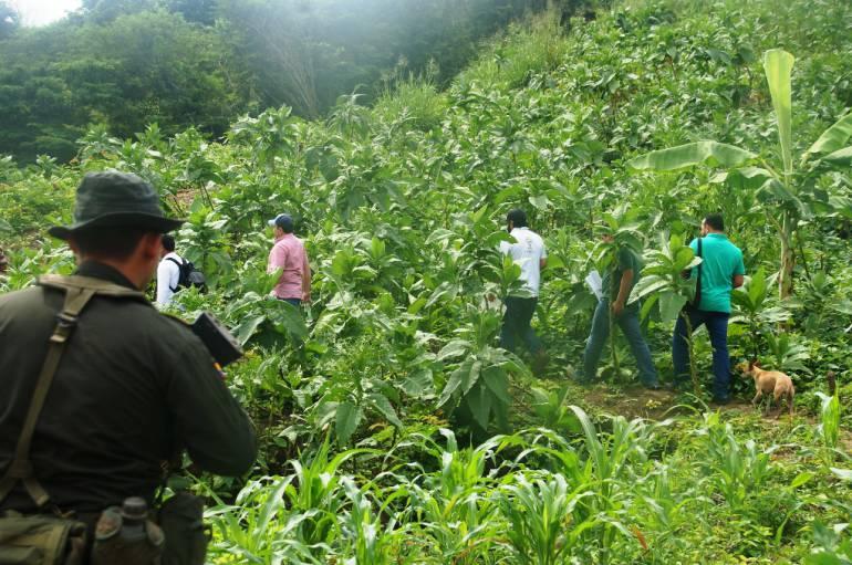 Contraloría General visitó campesinos de Bolívar con restitución de tierras: Contraloría General visitó campesinos de Bolívar con restitución de tierras