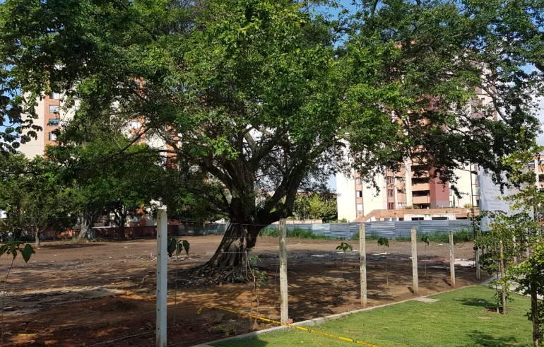 BUCARAMANGA COLEGIOS PARQUE DE LOS SUEÑOS: Construirán colegio al lado del parque de los Sueños