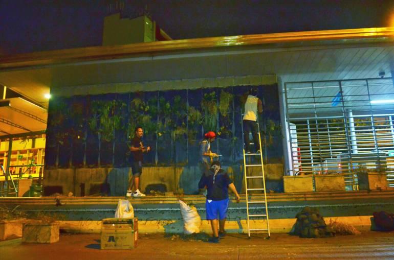 Instalan jardín vertical en estación Centro de Transcaribe: Instalan jardín vertical en estación Centro de Transcaribe