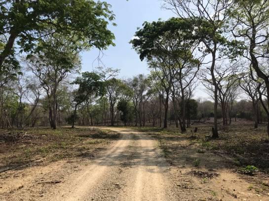 Playa Blanca cerrada: 'Hippielandia': Turistas que viven meses en carpas en las playas de Barú