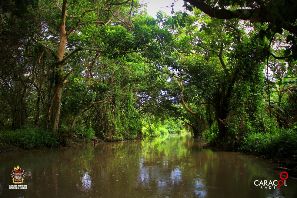 Turistas hacen recorridos por el Parque Isla Salamanca, conociendo la biodiversidad de la reserva