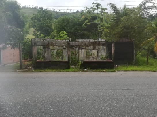 La maleza se está 'tragando' las ruinas de algunas viviendas que fueron abandonas por su propietarios a la orilla de la carretera de Puerto Valdivia.