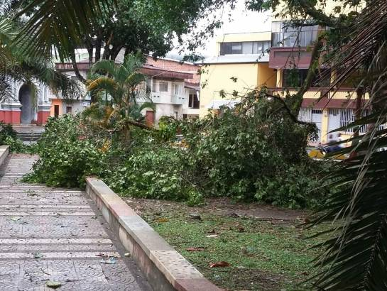 Chocó: Vendaval en Tadó deja al menos 200 viviendas afectadas