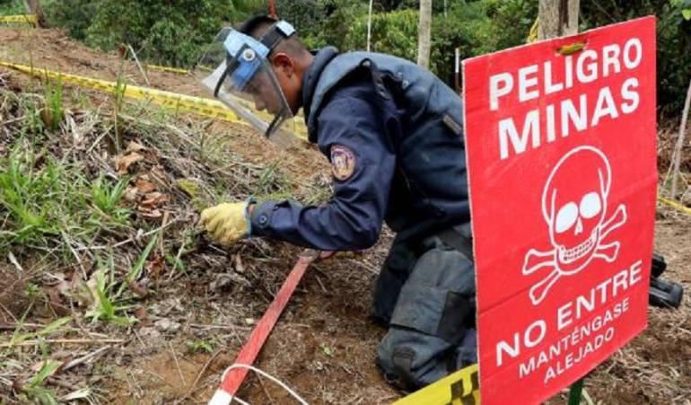 minas antipersonales: Avanza proceso de desminado humanitario en el sur del Tolima