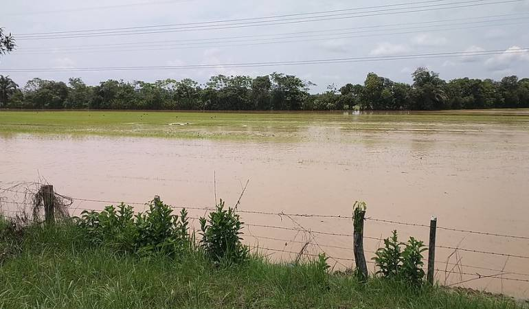 Monitoreo de ríos: Organismos de socorro monitorean ríos del norte del Tolima