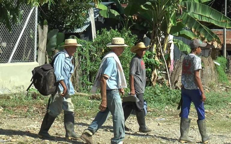 Denuncian desplazamiento de reclamantes de tierra en Urabá