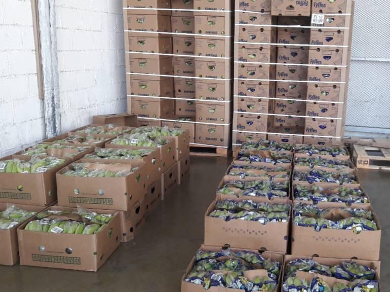 El cargamento de cocaína camuflada en cajas de bananos. /FOTO POLICÍA ANTINARCÓTICOS