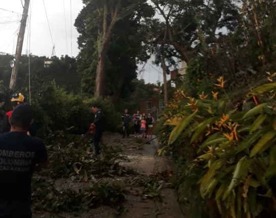 LLUVIAS TORMENTA BRISA VIENTO: Inundaciones en vías, caídas de techos y árboles dejó fuerte aguacero