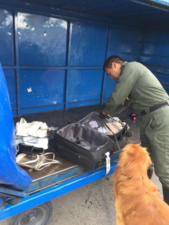 Amenaza bomba en avión: Detenido pasajero de aerolínea por falsa amenaza de bomba en un avión