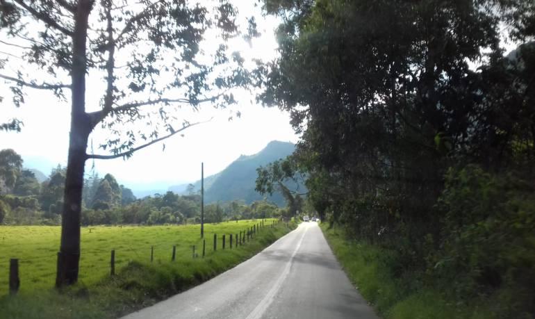Vía al Valle de Cocora en Salento, Quindío