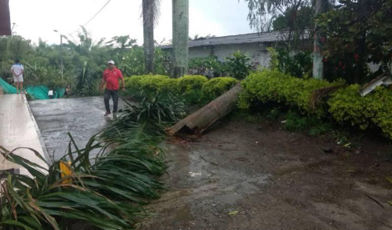 Fuerte vendaval causa afectaciones en el sector de Cerritos en Pereira