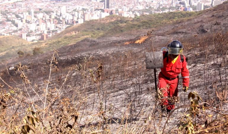 Incendios: Las altas temperaturas en Cali intensifican los incendios forestales