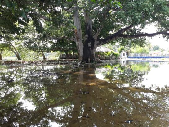 Crisis por lluvias en Lorica: Lorica: la lucha entre los cuerpos de agua y los cuerpos del hombre