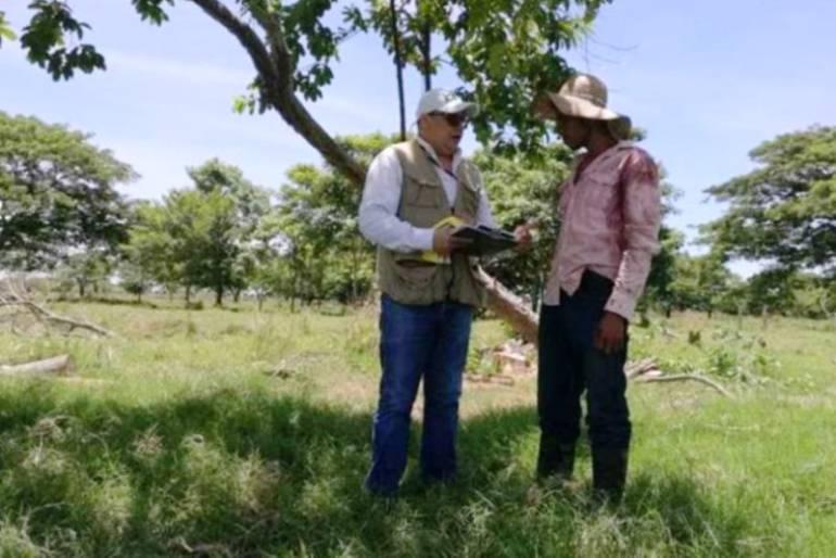 ICA Bolívar realizó brigadas fitosanitarias contra plagas en frutales: ICA Bolívar realizó brigadas fitosanitarias contra plagas en frutales