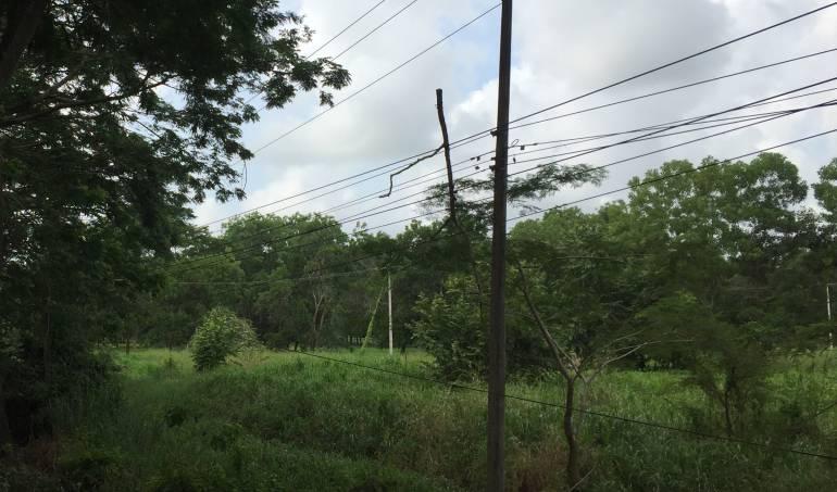 Electricaribe: Vendavales no afectarán el servicio de energía: gerente de Electricaribe
