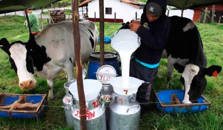TLC, alianza del pacifico: Piden excluir leche, carne y azúcar de negociaciones Alianza del Pacifico
