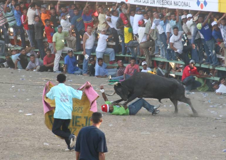 Muerto en corralejas: Un hombre muere al ser embestido por un toro en Usiacurí