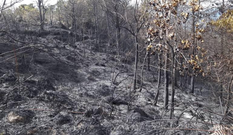 Incendio en Gramalote