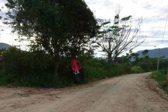 APARECIÓ LA BANDERA DE LA GUERRILLA DEL ELN EN LA VÍA A PALOGORDO: Apareció la bandera del Eln en la vía a Palogordo