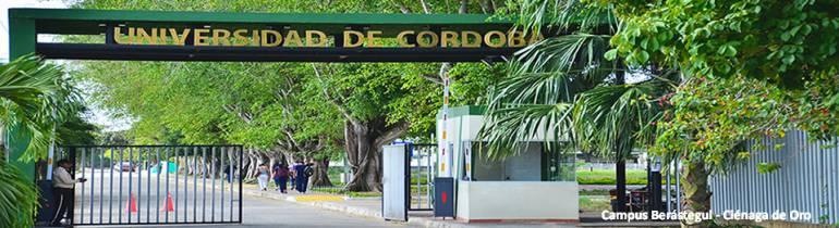 Educación superior: Universidad de Córdoba con alta presencia Internacional