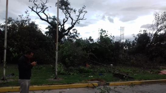 Vendaval en Cundinamarca: Emergencia en Cundinamarca por fuerte vendaval en Tenjo