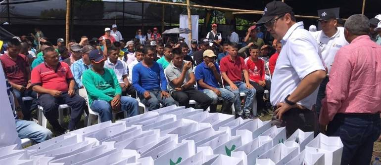 Paz: Delincuencia organizada en norte del Cauca, ofrecen dinero a reinsertados