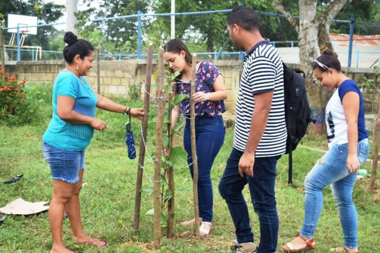 Alcaldía de Arjona realiza siembra de árboles: Alcaldía de Arjona realiza siembra de árboles