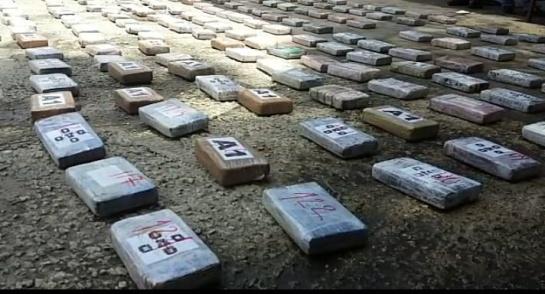 Narcotráfico: Incautan 170 kilos de coca camuflados en cargamento de cocos
