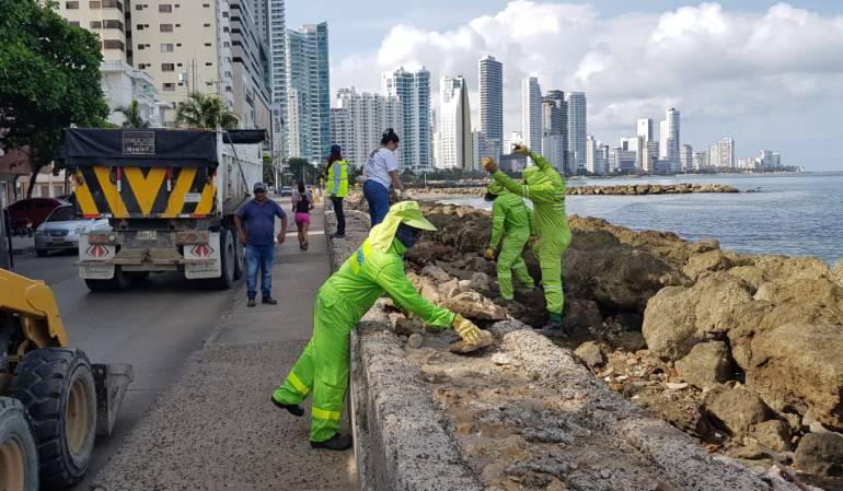 Jornada mundial de limpieza: Cartagena conmemoró día internacional de la limpieza