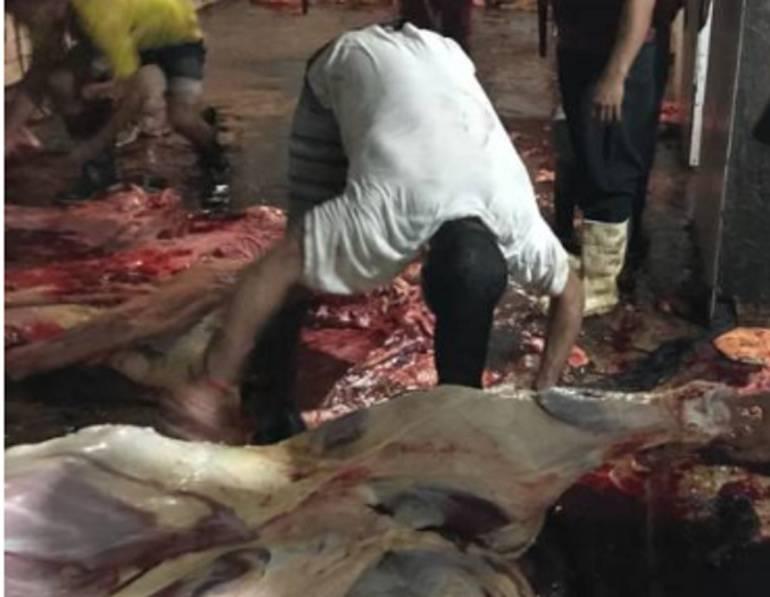 A Santa Marta ingresan 5 mil kilos de carne diarios desde Venezuela