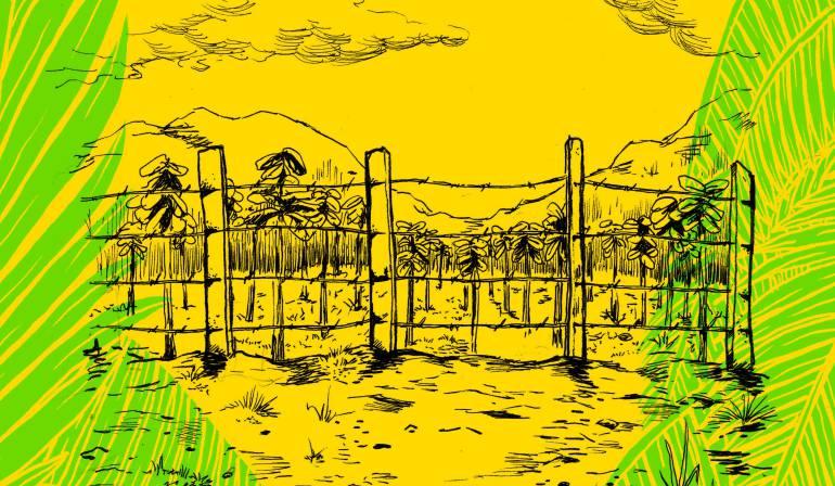 'Caminos condenados': novela gráfica sobre los Montes de María: 'Caminos condenados': la novela gráfica sobre el posconflicto en el campo