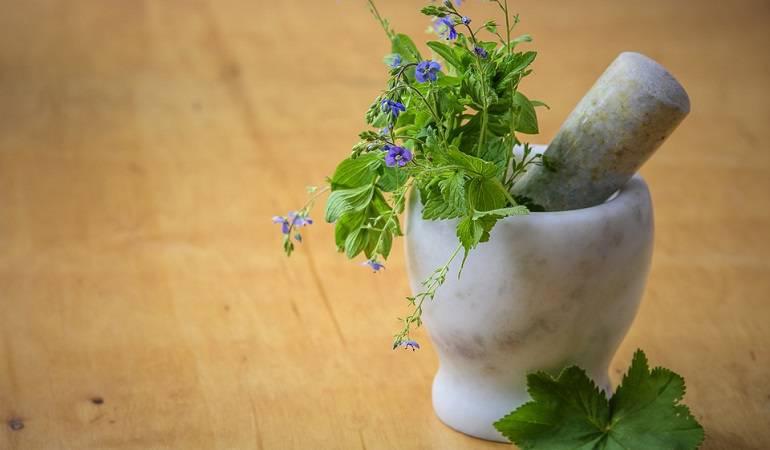Lo Más Caracol: Medicina naturopática, preventiva y curadora