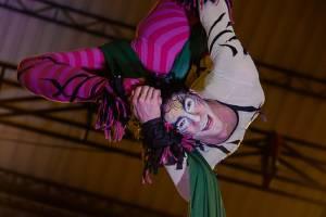 El circo pasión a través del lente