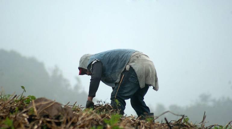 Al Campo lluvias clima: Las lluvias se mantendrán en niveles normales para el campo