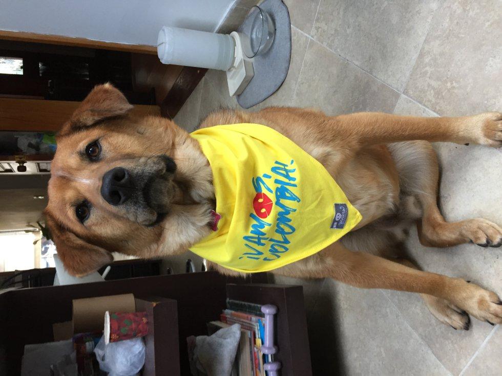 Juliana Alfonso nos envió la foto de su mascota mundialista