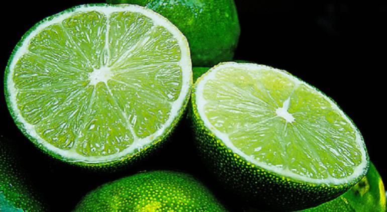 Limones enfermedades: ICA fortalece protección a los cítricos ante la bacteria HLB