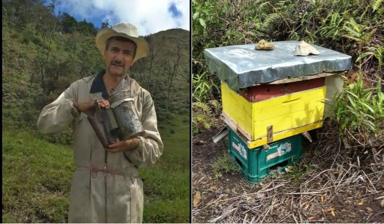 Fotos suministradas por Luis Emilio Ospina, apicultor
