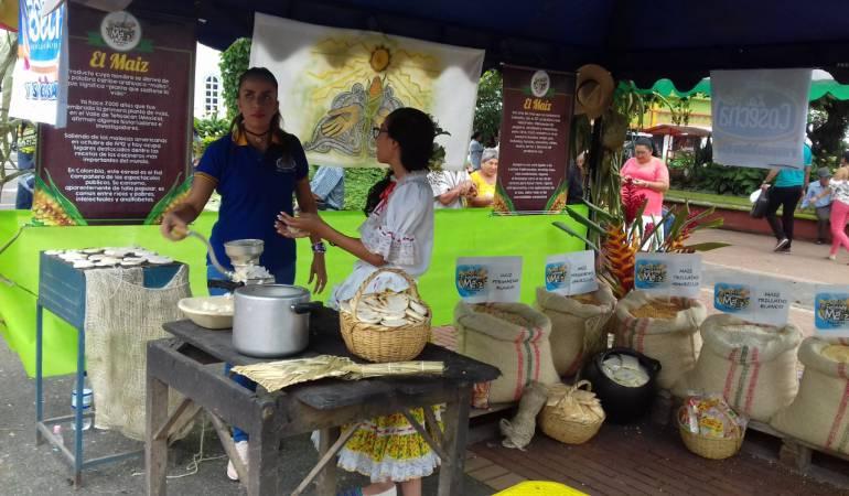cultivos Maíz: Llegó la Fiesta del Maíz a Barcelona, Quindío