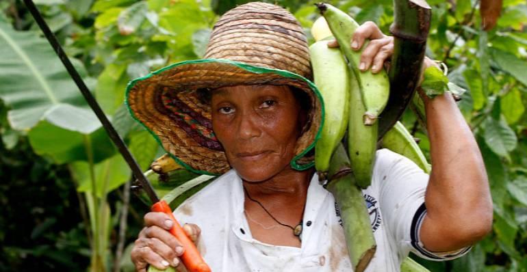 La mujer campesina, básica en la producción del agro