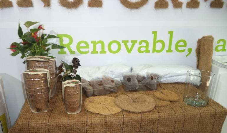 coco sulfatos: El coco se transforma para mejorar la agricultura