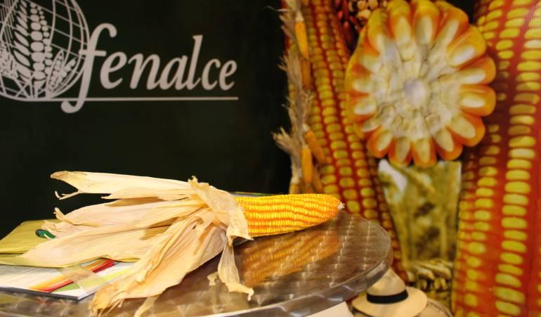 Maiz importado: Colombia aspira a producir el 80% del maíz que consume, antes de 2030