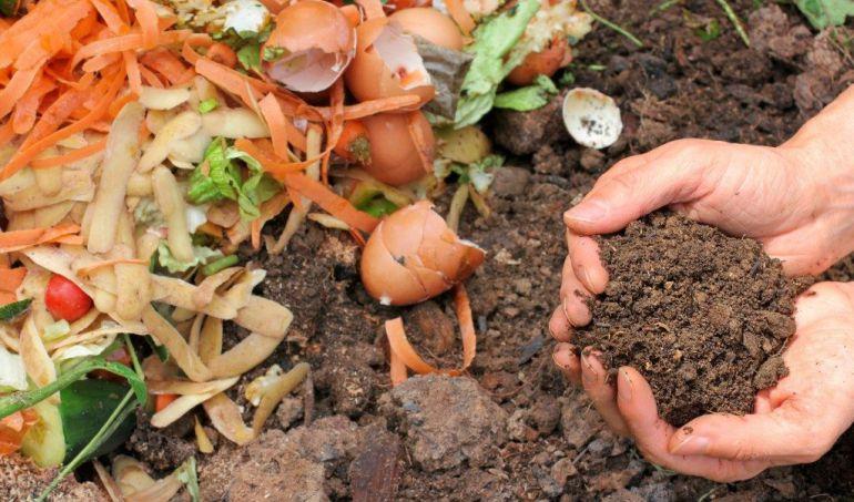 tierras agro: En Colombia estamos acabando la tierra para el agro