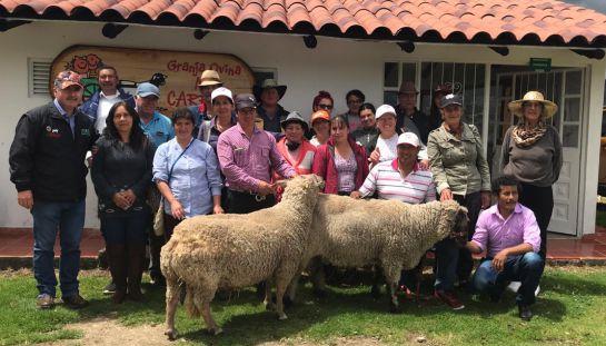 Asoovinos: Consumir carne de ovino, un buen propósito para 2019