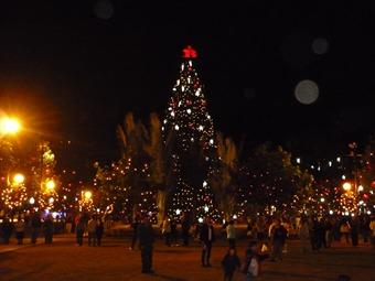 El próximo 4 de diciembre el Parque de la 93 encenderá las luces de navidad