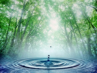 Premios para jóvenes protectores del agua