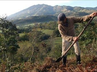 Gobierno revela nuevo caso de usurpación de tierra en Parques Nacionales