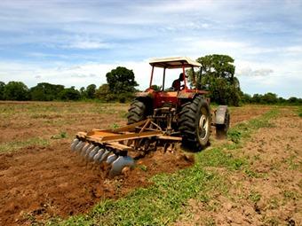 Colombia realizará el primer censo agropecuario